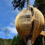 Chrysalis Treehouse, Nuova Zelanda