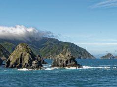 In Nuova Zelanda si sta lavorando solo 4 giorni a settimana: è la svolta?